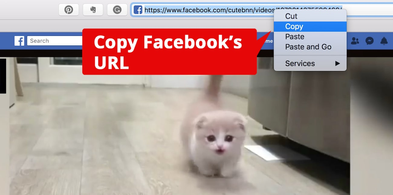 Cómo Descargar Vídeos de Facebook a iPhone o Mac
