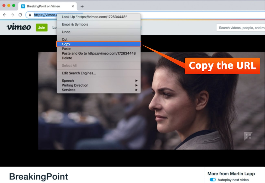 Copy the video URL